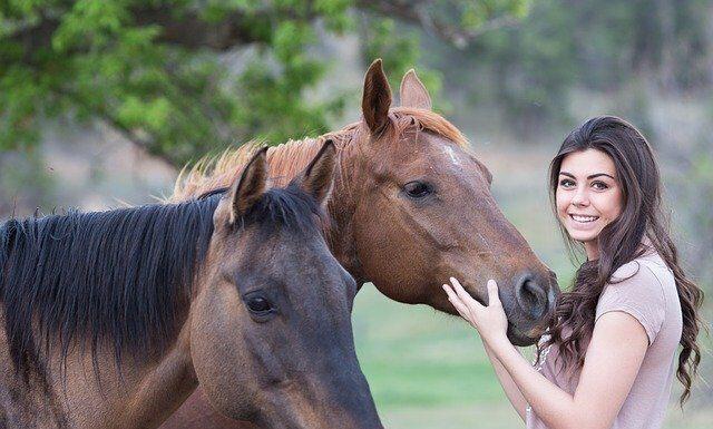 ile kosztuje utrzymanie konia